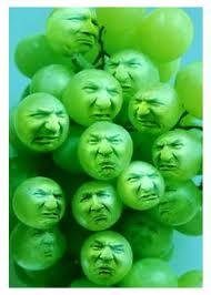 sourgrapes